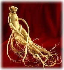 ginseng-non-solo-afrodisiaco-oggi-e-viagra-na-L-EMR3OI