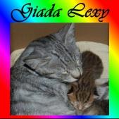giada-e1616053656868