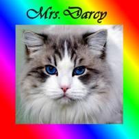 mrs-darcy